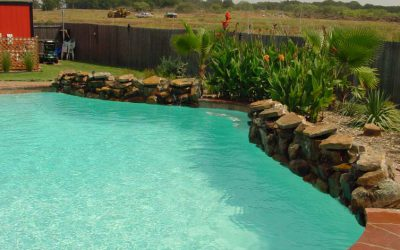 How to keep your swimming pool water bacteria-free